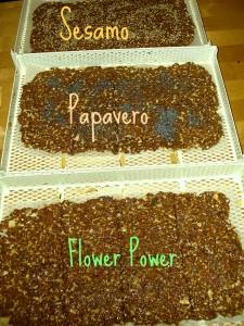 essiccatore per crackers fatti in casa