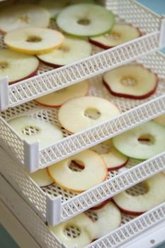 Essiccatore per mele