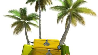 Tropical trip and elegant luggage