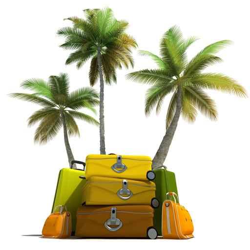 Tropical trip and elegant luggage