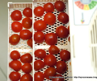 freschi-tauro-pomodori-ciliegini-secchi-tauro-essiccatore-0005