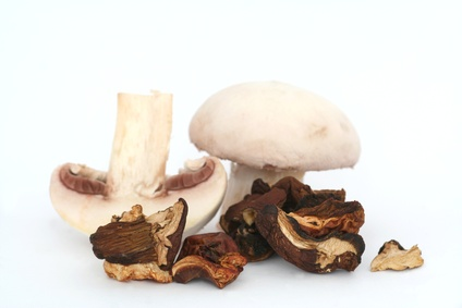 dried mushrooms and champignons