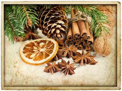 addobbi natalizi fai da te con arance