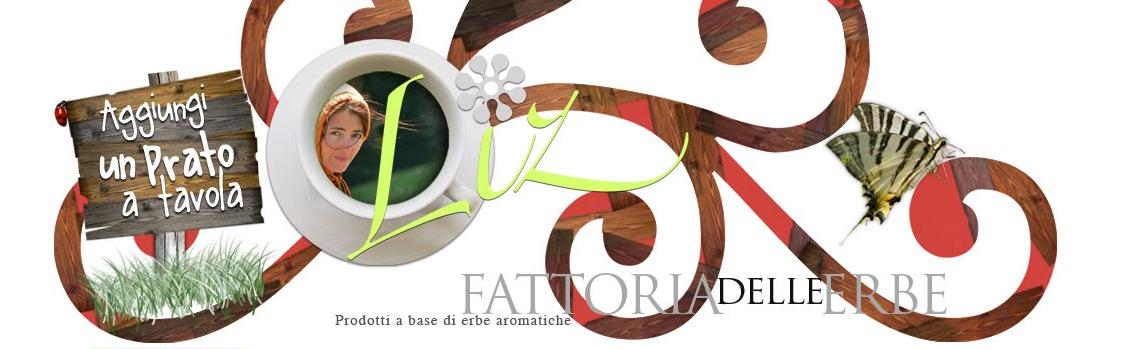 banner-fattoria-elle-erbe1