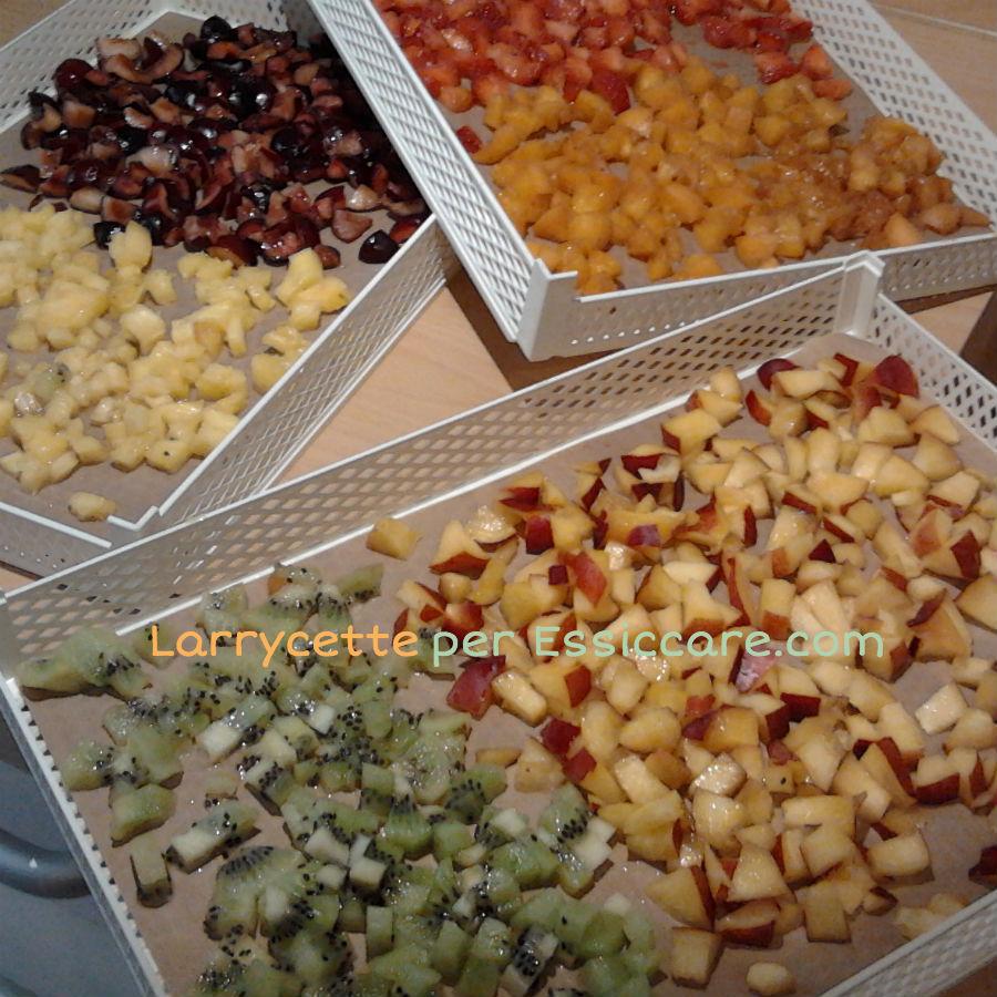 Canditi-frutta-essiccata-senza-zucchero-01