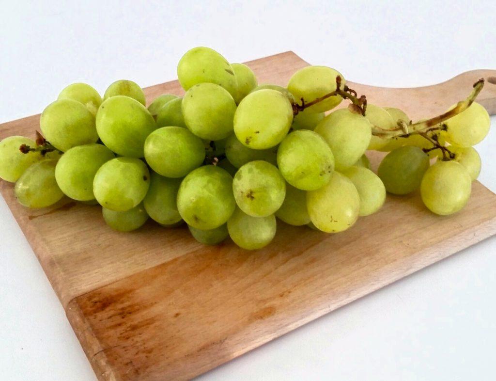 essiccare uva