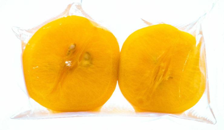 personal-chef-frutta-semi-candita-biosec-tauro-essiccatori