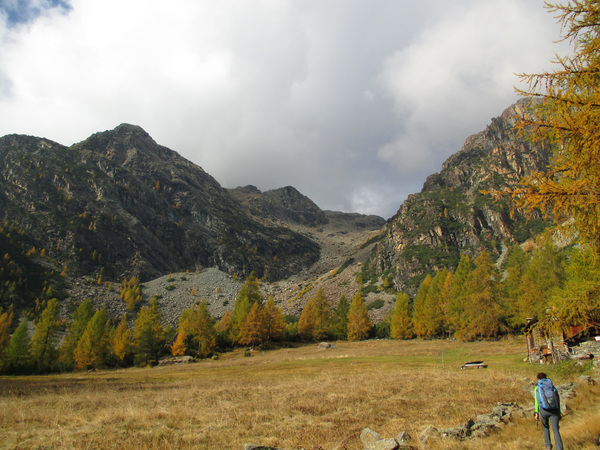 autunno cachi