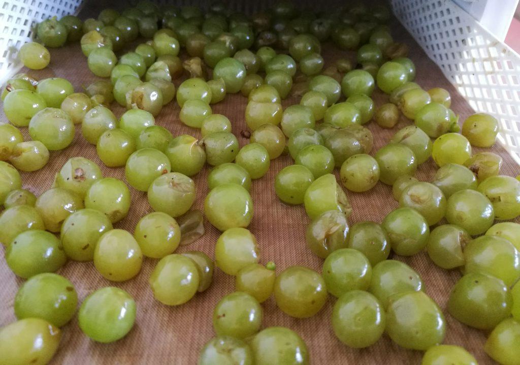 uva essiccata da Chiara Berlenga