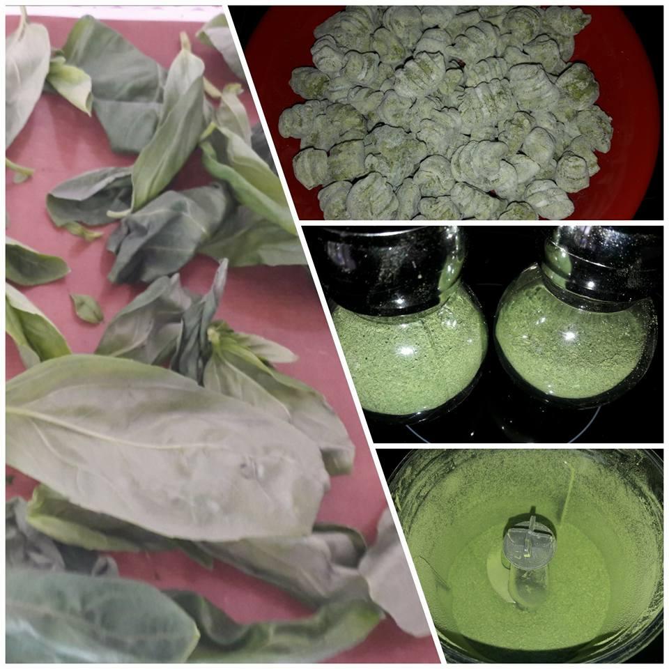 Gnocchi e ravioli al basilico e spinaci essiccati