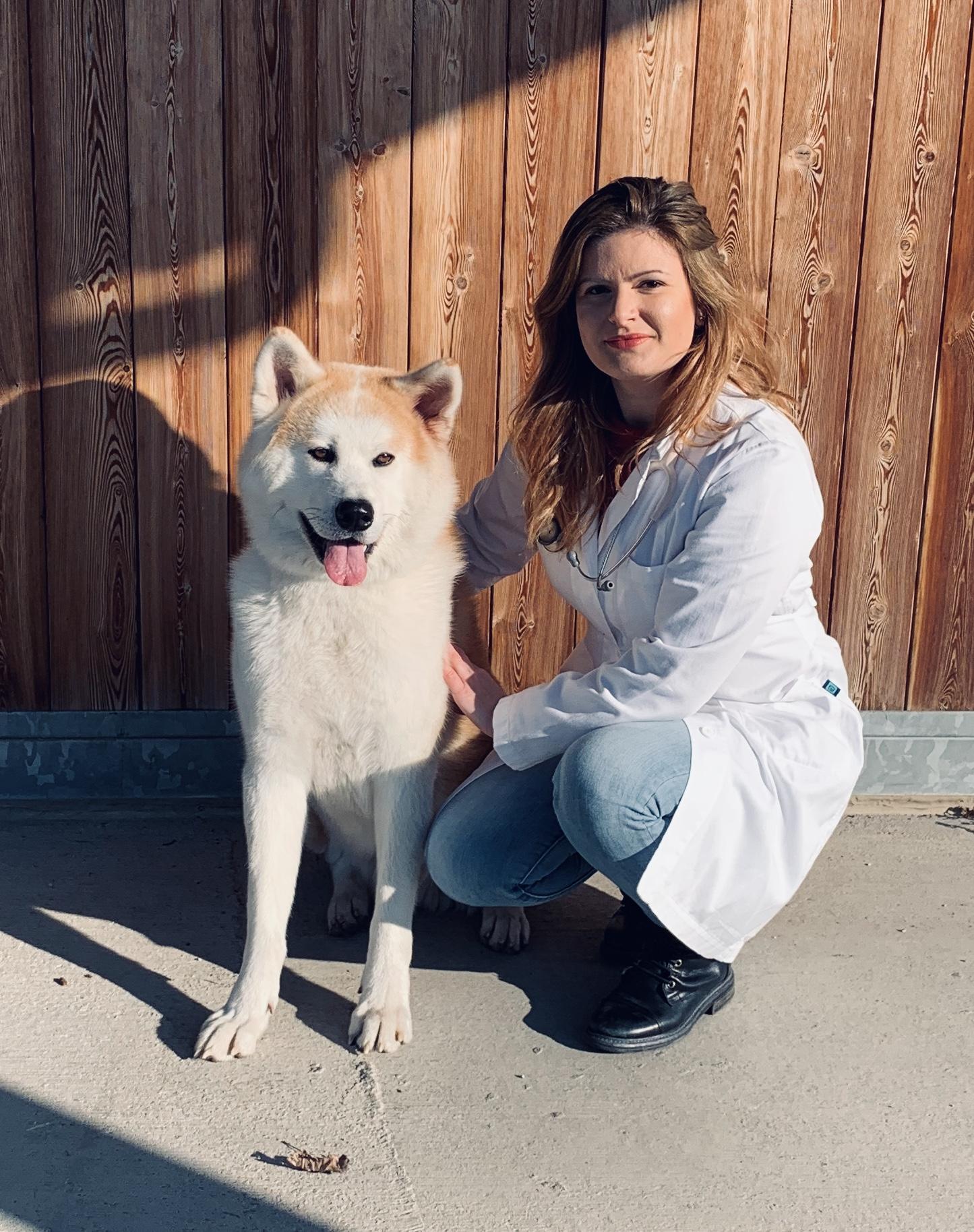 Domande Al Veterinario Cane essiccando con giada, la veterinaria nutrizionista