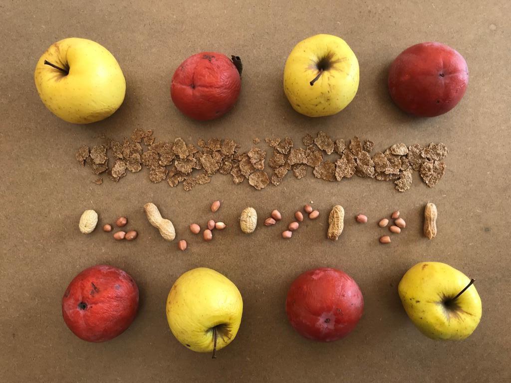 frutta brutta essiccata