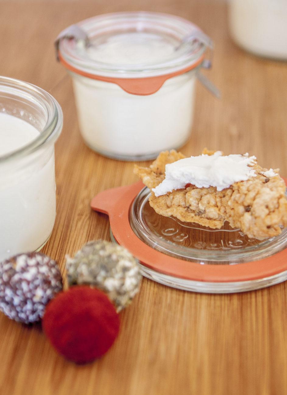 yogurt fermentato in essiccatore