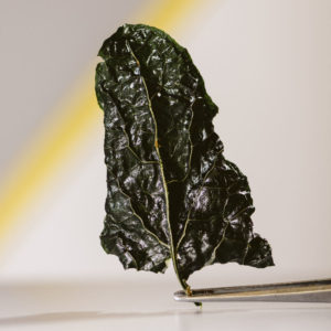 Chef Dalicandro - Chips verdure essiccate - tauro essiccatori - foto marcella cistola (2)