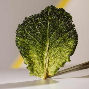 Chef Dalicandro - Chips verdure essiccate - tauro essiccatori - foto marcella cistola (3)