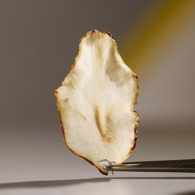 chef dalicandro - chips di verdure essiccate - tauro essiccatori - marcella cistola foto (1)