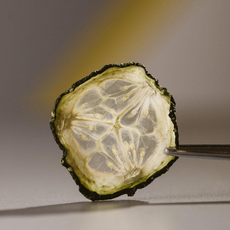 chef dalicandro - chips di verdure essiccate - tauro essiccatori - marcella cistola foto (2)