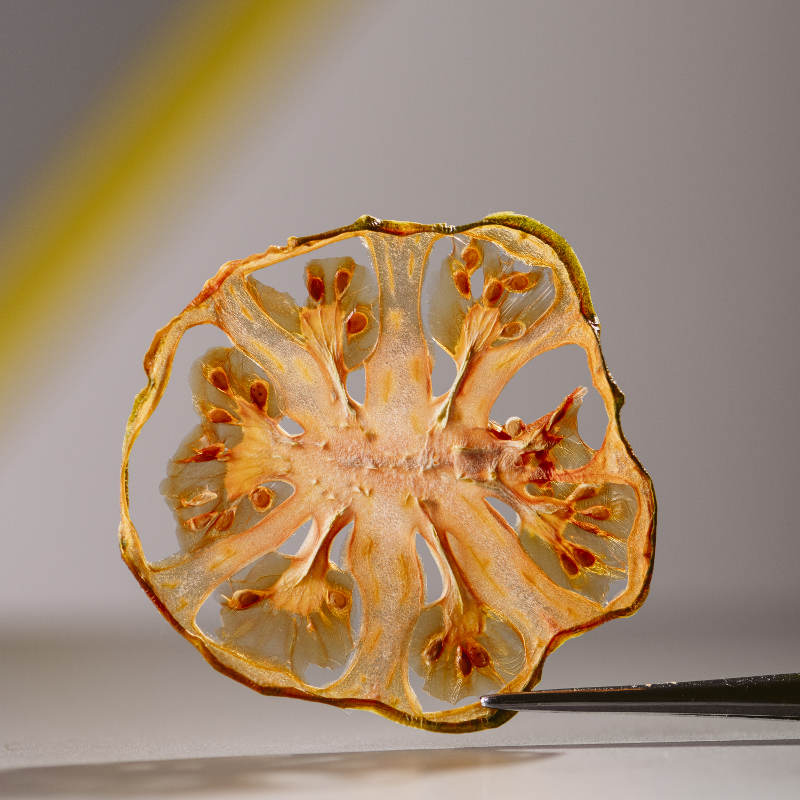 chef dalicandro - chips di verdure essiccate - tauro essiccatori - marcella cistola foto (3)